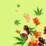 THC Gummies - Comestibles au cannabis que vous devez essayer | Commander Weed En Ligne  | CANADA