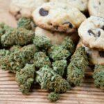 Tableau de dosage des produits comestibles: comment doser les produits comestibles à la marijuana | Commander Weed En Ligne  | CANADA