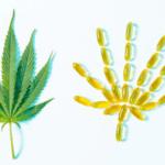 ✅ Voici comment faire des pilules de THC ou des capsules de gel